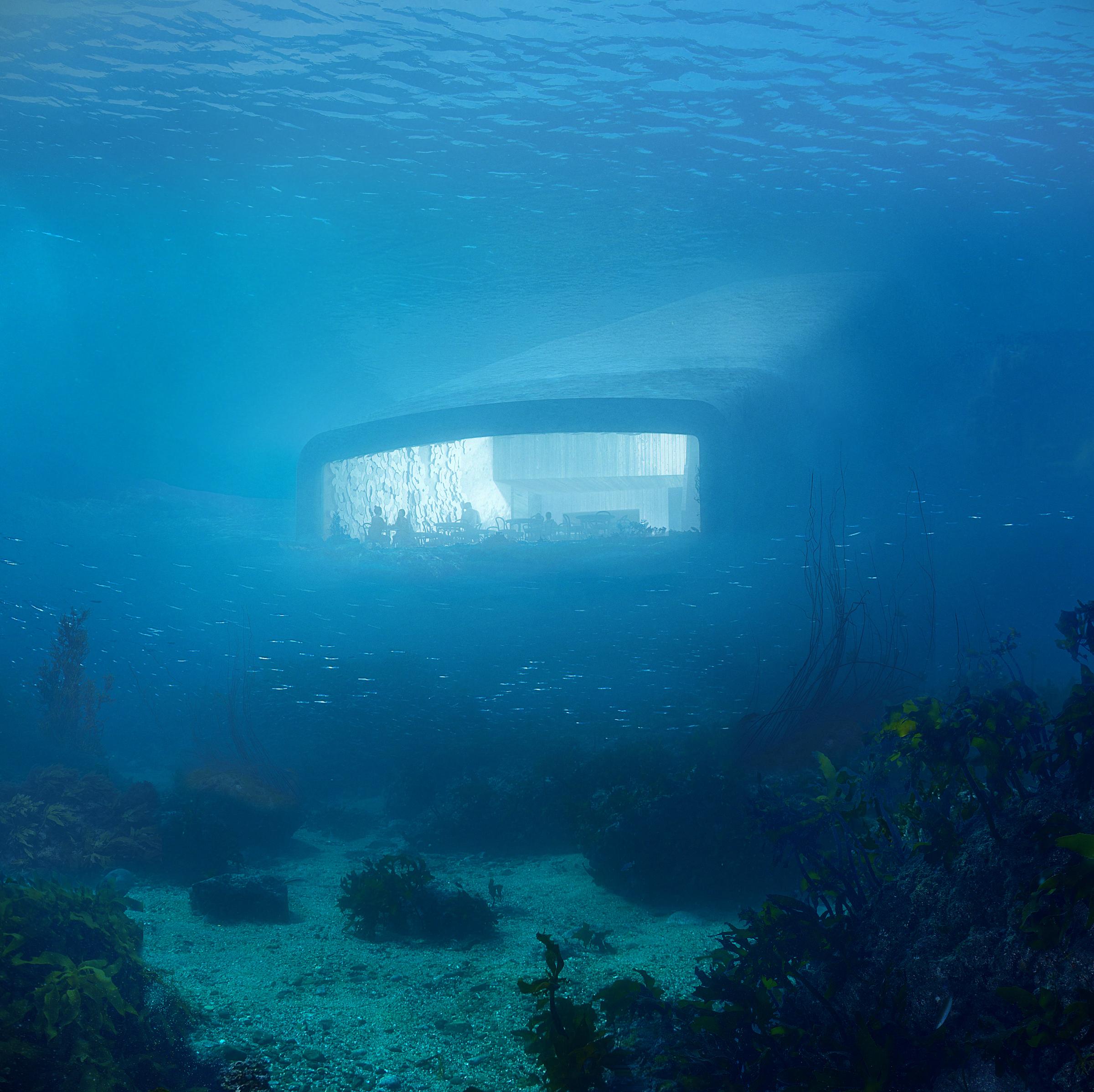 Agencja randkowa ryby w morzu